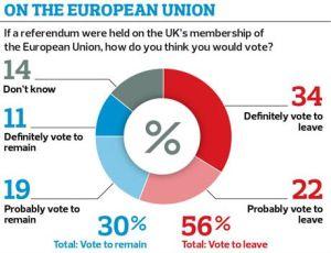 Credit Observer poll
